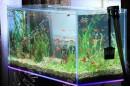 Изготовление аквариумов на заказ - объем до 150 литров