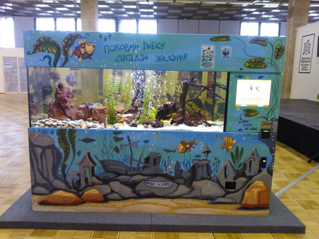 Услуги по дизайну аквариума