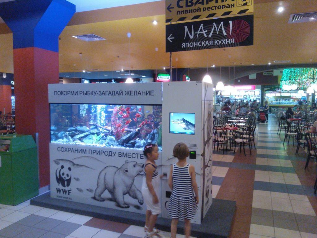 Дизайн и оформление аквариумов